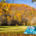 camping-automne