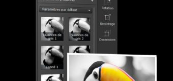 Comment transformer une photo couleur en noir et blanc facilement ?